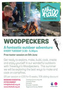 Woodpeckers summer campfire making